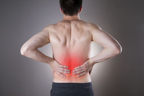 is rowing good for your back?