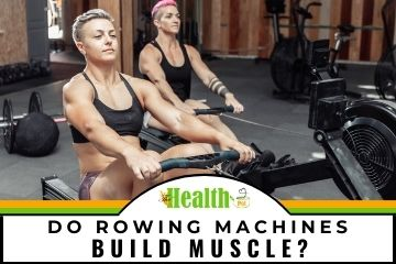 do rowing machines build muscle