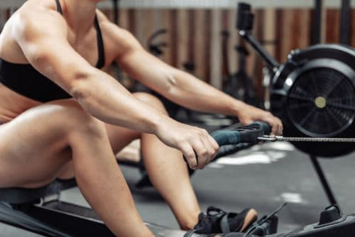 muscles used by rowing machine